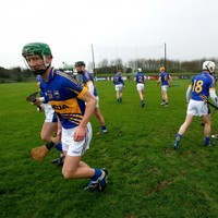 Tipperary's Waterford Crystal Cup tie against UL has been postponed