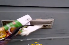 Furious cat fights postman through the letterbox