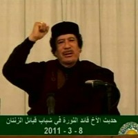 Gaddafi offers truce and negotiations in Libya but no sign of stepping down