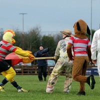 Snapshot: Some mascots had an altercation during a Schools Cup game today