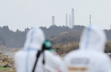 Top nuclear adviser to Japanese government quits over radiation limits