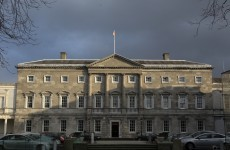 Poll: Does the Dáil need to be reformed?