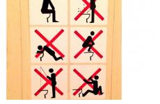 Bad news, toilet fishing is no longer allowed at the Sochi Olympics