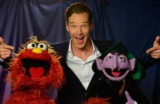 Cumberbatch's Sesame Street meeting opens with a big fat Sherlock spoiler