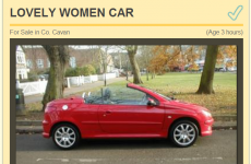 This Cavan car ad is only for Lovely Girls