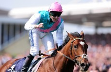 Frankel to bypass Epsom Derby