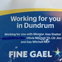 "FG councillor resorts to ""handy blue marker"" to remove references to Mathews"