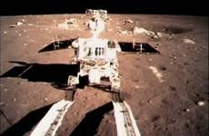 China's Jade Rabbit dies on moon's surface