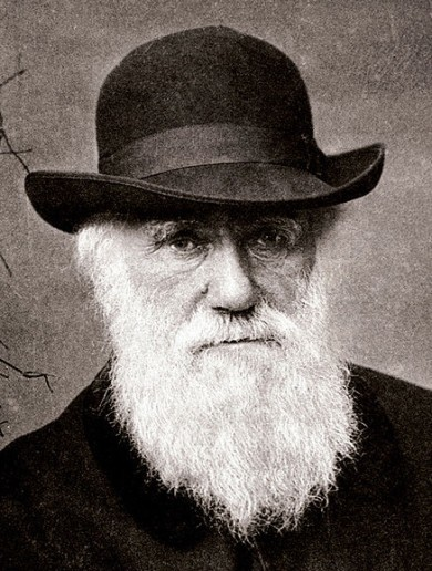 How did poor old Charles Darwin get dragged into the nation's storm coverage?