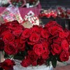 Poll: Do you celebrate Valentine's Day?