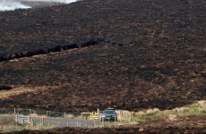 Fires cause €5 million worth of damage with 985 hectares of land destroyed