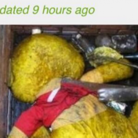 This BBC headline about a sewer is absolutely unbeatable