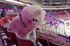 Sad Sochi bear is the symbol of Russia's ice hockey heartbreak