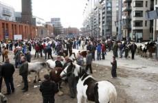 Gardaí make further arrest in Smithfield horse fair probe