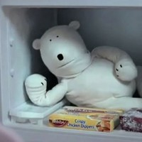Polar bear from the Birds Eye ads... with a gas Irish accent