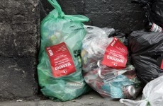 500 doors knocked on as Dublin litter crackdown targets landlords