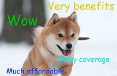 An official arm of the US government is tweeting doge memes