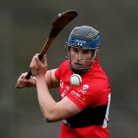 How do the four teams on the hunt for the Fitzgibbon Cup title rank?