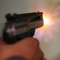 Gun control review sparks calls for compensation schemes