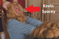 Jimmy Kimmel's star studded Keyboard Cat parody is phenomenal
