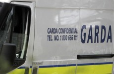 12 arrested and 8 shotguns seized in garda operation targeting burglary gang