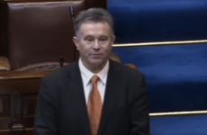 VIDEO: Dáil hears about 'three-day festival and orgy organised by the government'