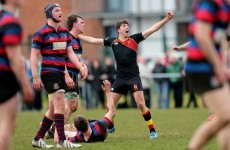 Schools Cup: Munchin's mauled as Ardscoil Rís advance to Munster final