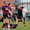 Schools Cup: Munchin's mauled as Ardscoil Rís advance to Munster final