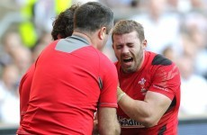 Leigh Halfpenny's season is over after dislocating shoulder in Welsh defeat