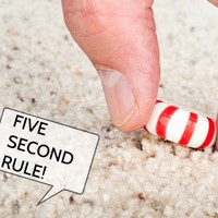 Relax everyone, scientists have proved the 'five second rule' is real