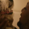 This heartwarming dog adoption ad is a rollercoaster of emotions