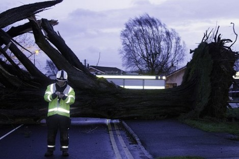 A tree down on the Block Road, Portlaoise on 12 February