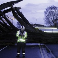 Huge spike in demand for insurance & claims specialists following storms