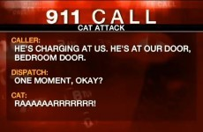 Family call 911 after angry fat cat holds them hostage
