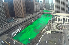 Timelapse video shows Chicago turning the river green