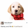 Marley and Me left Irish TV viewers in an absolute STATE last night