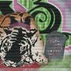 Tiger's gone: Inventor of Celtic Tiger resigns
