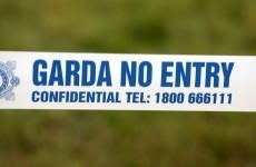 Man shot in Drogheda estate