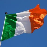 Column: Why has the Government ignored the Irish diaspora – again?