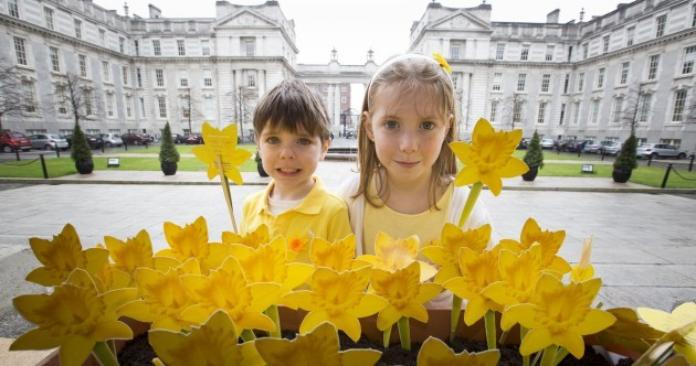 "This year's ""waterproof"" Daffodil Day won't be affected by bad weather"