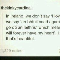 The internet has some excellent Irish language advice for tourists