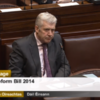 Minister nominated for 'brass neck of the year' as TDs row about Seanad reform