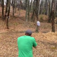 Badass tree fights back at man using it for target practice