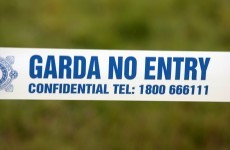 Man dies in Roscommon fire