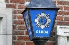 Man arrested in wooded area over €228k cannabis find