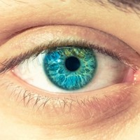 Trinity researchers make blindness breakthrough