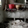 Rats chew through woman's house from the inside out