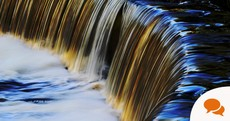 Column: The Dodder is one of Europe's best-preserved city rivers – with huge unexploited potential