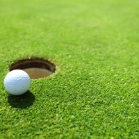 On the green: NAMA nets €5 million for €80 million Kildare golf resort