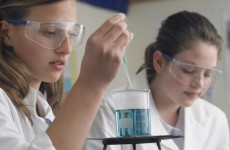 """New Leaving Cert science course poses risk to """"high standards"""" of education"""